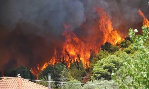 Κατάρ: «Οι πυρκαγιές μπλοκάρουν την τουριστική επένδυση στη Ζάκυνθο»