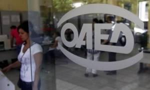 ΟΑΕΔ: Ξεκινούν την Πέμπτη οι αιτήσεις για την πρόσληψη 1.459 ανέργων