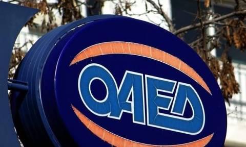 ΟΑΕΔ: Από σήμερα οι αιτήσεις για την πρόσληψη 1.459 ανέργων σε επιχειρήσεις - Ποιους αφορά