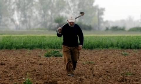 Αγρότες: Μέχρι πότε μπορούν να κάνουν τροποποιητικές φορολογικές δηλώσεις χωρίς πρόστιμο