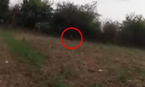 Δαιμόνιο βγαίνει από τα δέντρα και επιτίθεται σε μικρό κορίτσι (video)