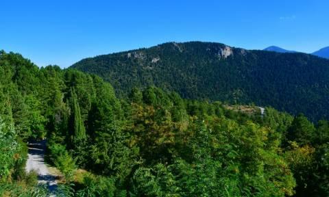 Απόδραση - αστραπή στην ορεινή Κορινθία: Το χωριό Καστανιά που θα σας κλέψει την καρδιά