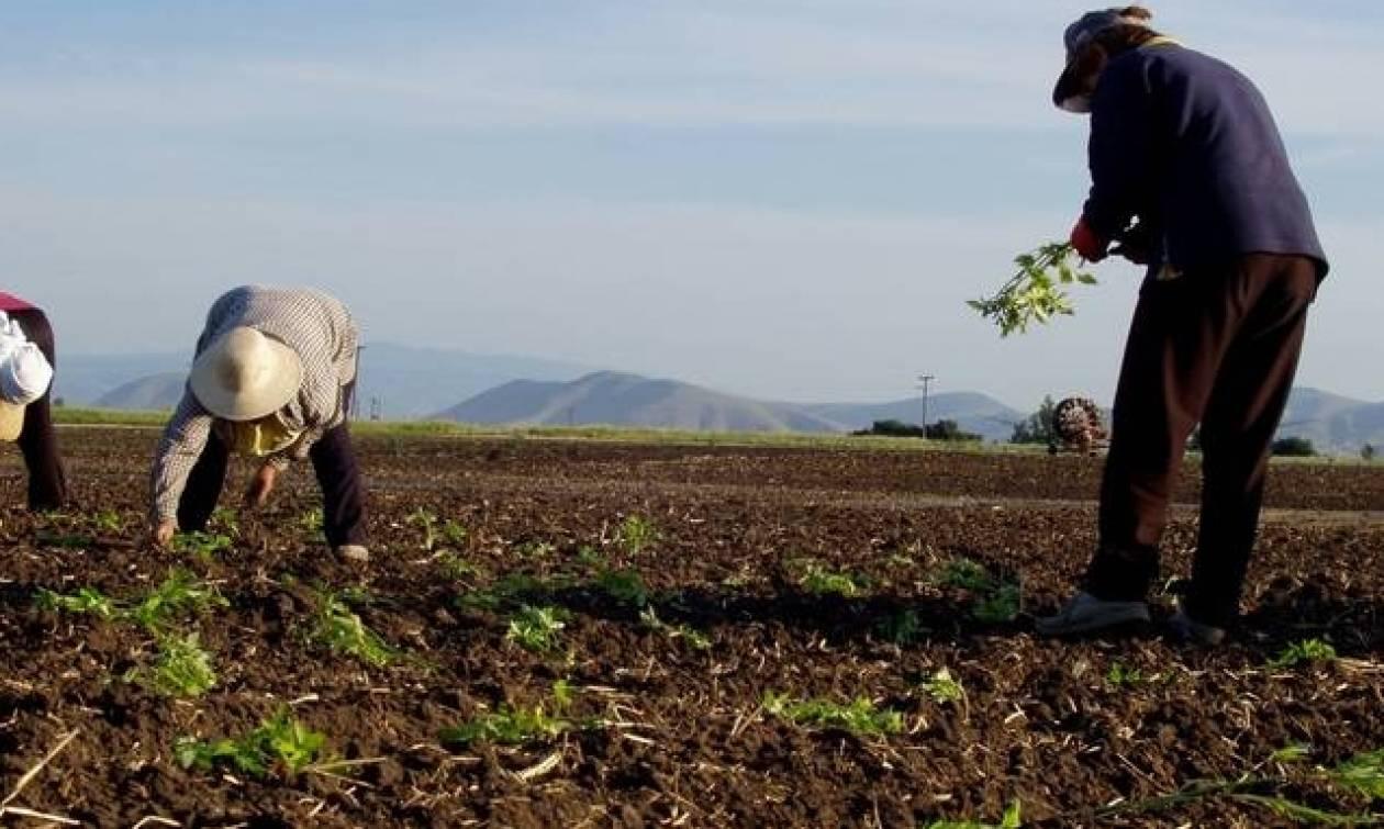 Αγρότες/Αυτοαπασχολούμενοι: Έτσι θα πληρώσουν τις εισφορές που οφείλουν από το 2016