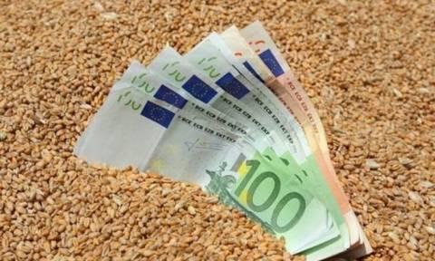 ΟΠΕΚΕΠΕ: Δείτε πότε θα πληρωθούν οι νέες επιδοτήσεις σε 537.406 αγρότες