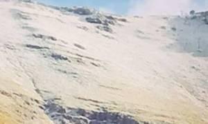 Καιρός ΤΩΡΑ: Έπεσαν τα πρώτα χιόνια - Δείτε σε ποια περιοχή της Ελλάδας άρχισε να το... στρώνει!