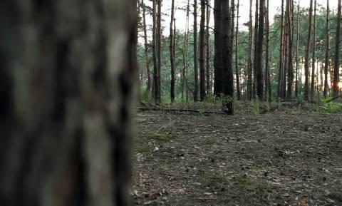 Σύζυγος και ερωμένη έβαλαν να τον απαγάγουν, να τον δείρουν και να τον αφήσουν γυμνό στο δάσος!