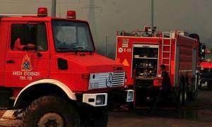 Χαλκιδική: Στις φλόγες η Ιερά Μονή Ευαγγελισμού στην Ολυμπιάδα