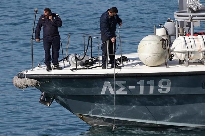 Κρήτη: Ευχάριστη επίσκεψη - Δελφίνι «έκοβε» βόλτες σε απόσταση αναπνοής από το λιμάνι! (pics)