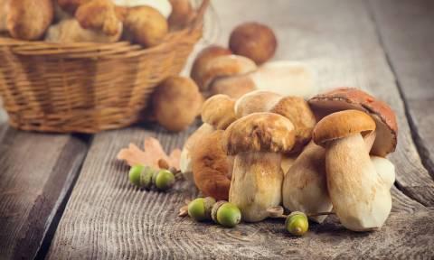 Τα μανιτάρια κορυφαία αντιγηραντική τροφή – Ποια ποικιλία παρέχει τα περισσότερα αντιοξειδωτικά