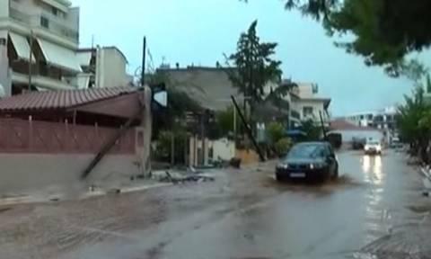 Ο τρόμος επέστρεψε στη Μάνδρα Αττικής - Ανεβαίνει και πάλι η στάθμη του νερού
