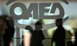 ΟΑΕΔ: Είστε άνεργος; Αυτά τα δύο προγράμματα προσφέρουν 35.000 θέσεις εργασίας
