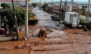 Δήμαρχος Μάνδρας: Δε μπορούμε να θάψουμε τους νεκρούς μας