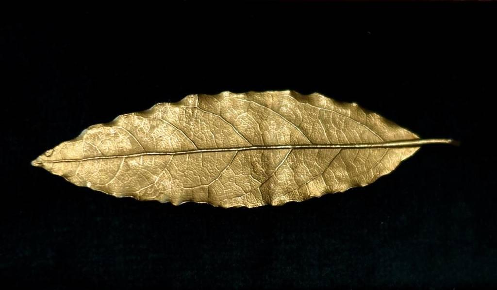 Απίστευτο: Αστρονομικό ποσό για ένα χρυσό φύλλο από το στέμμα του Ναπολέοντα (Pics+Vid)