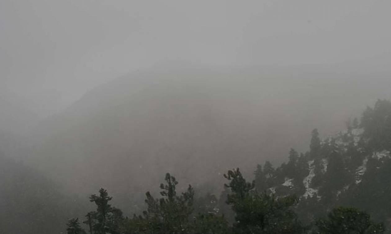 Καιρός: «Έπεσαν» τα πρώτα χιόνια στην Πάρνηθα