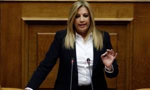 Φώφη Γεννηματά: Ξεκινάνε οι συναντήσεις για την ίδρυση του νέου φορέα της Κεντροαριστεράς