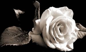 Θλίψη: Πέθανε ο Νίκος Καρυώτης