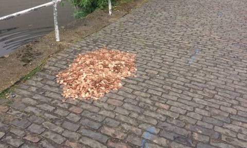Άφησαν ένα «βουνό» από χιλιάδες νομίσματα στο δρόμο και αυτό που συνέβη θα σας σοκάρει (Pics)