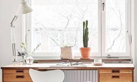 Τέσσερα φυτά που μπορείς να έχεις στο γραφείο σου και αυξάνουν την αποδοτικότητα σου