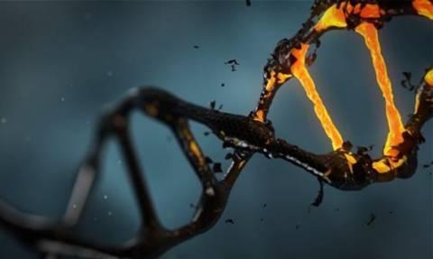 DNA: Το γενετικό αλφάβητο μόλις μεγάλωσε κατά 50%