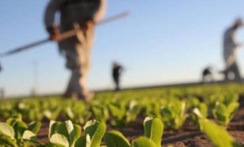 Σήμερα (1/12/17) οι αποζημιώσεις σε κτηνοτρόφους και αγρότες