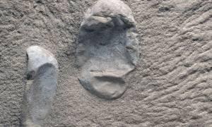Σπουδαία ανακάλυψη στην Κίνα: Βρέθηκαν πολλά απολιθωμένα αυγά πτερόσαυρων με έμβρυα