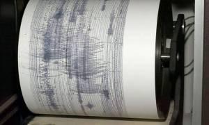 Σεισμός κοντά στη Γαύδο