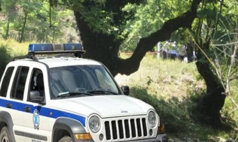 Χωρίς περιπολικά Αστυνομικό Τμήμα στην Ηλεία - Δείτε τι συνέβη