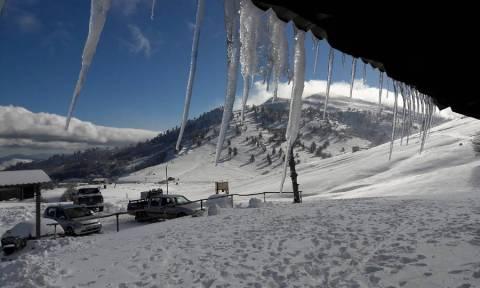 Υπέροχο, λευκό σκηνικό στο χιονοδρομικό κέντρο της Βασιλίτσας (pics)