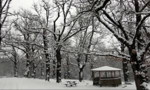 Καιρός - Χιονιάς: «Βουτιά» του υδράργυρου έως και 10 βαθμούς – Πού θα το στρώσει