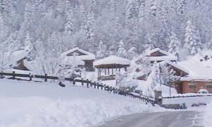 Έπεσαν τα πρώτα χιόνια λίγες ημέρες πριν από τα Χριστούγεννα: Πού το έστρωσε