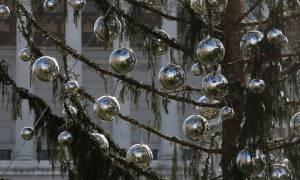 Ιταλία: Χαμός με το χριστουγεννιάτικο δέντρο της Ρώμης! (pics)