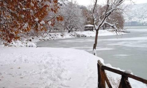 Χειμερινό Ηλιοστάσιο 2017: H Google μας εύχεται καλό χειμώνα!