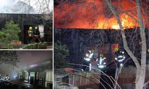 Μεγάλη πυρκαγιά στο Ζωολογικό Κήπο του Λονδίνου (pics+vid)