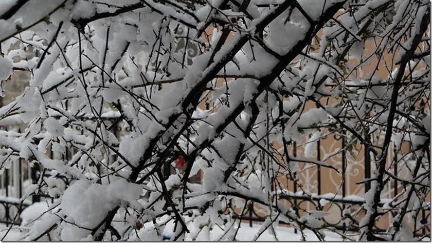 Στα λευκά η όμορφη Αμφίκλεια (pics)