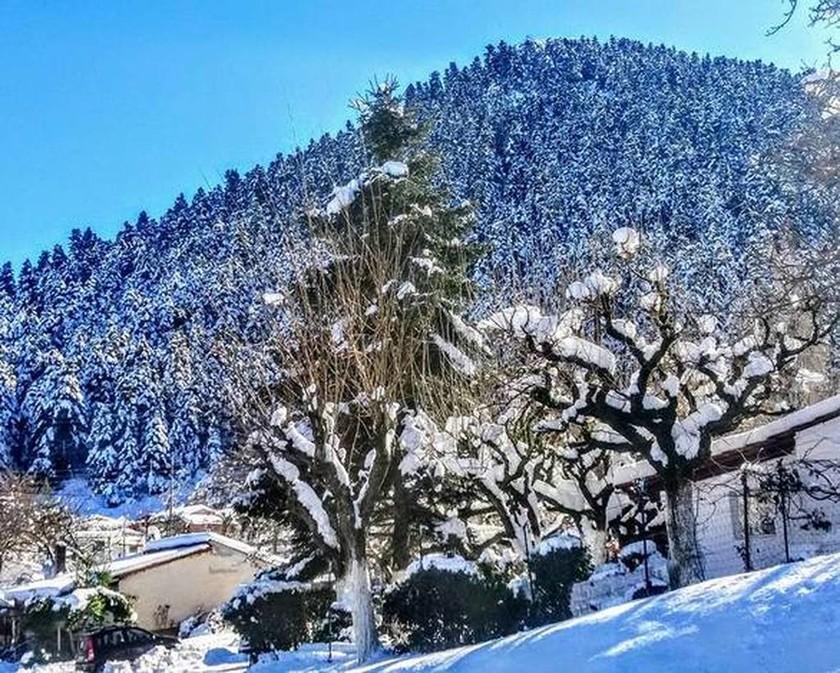 Χριστούγεννα 2017: Όμορφες εικόνες από τα χιονισμένα Καλάβρυτα