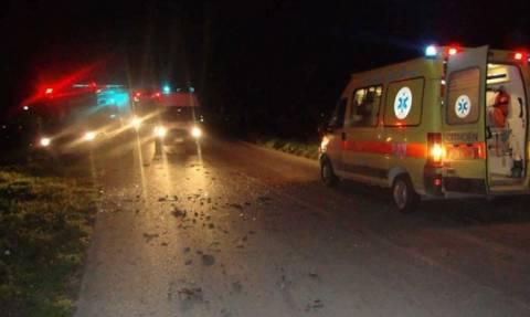 Νέα Θεσσαλονίκη: Σφοδρή σύγκρουση ΙΧ με αγελάδα στην Αριδαία (πολύ σκληρές εικόνες)