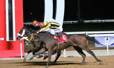 Έξι κούρσες με δυνατές «μάχες» στην τελευταία ιπποδρομιακή συγκέντρωση της χρονιάς