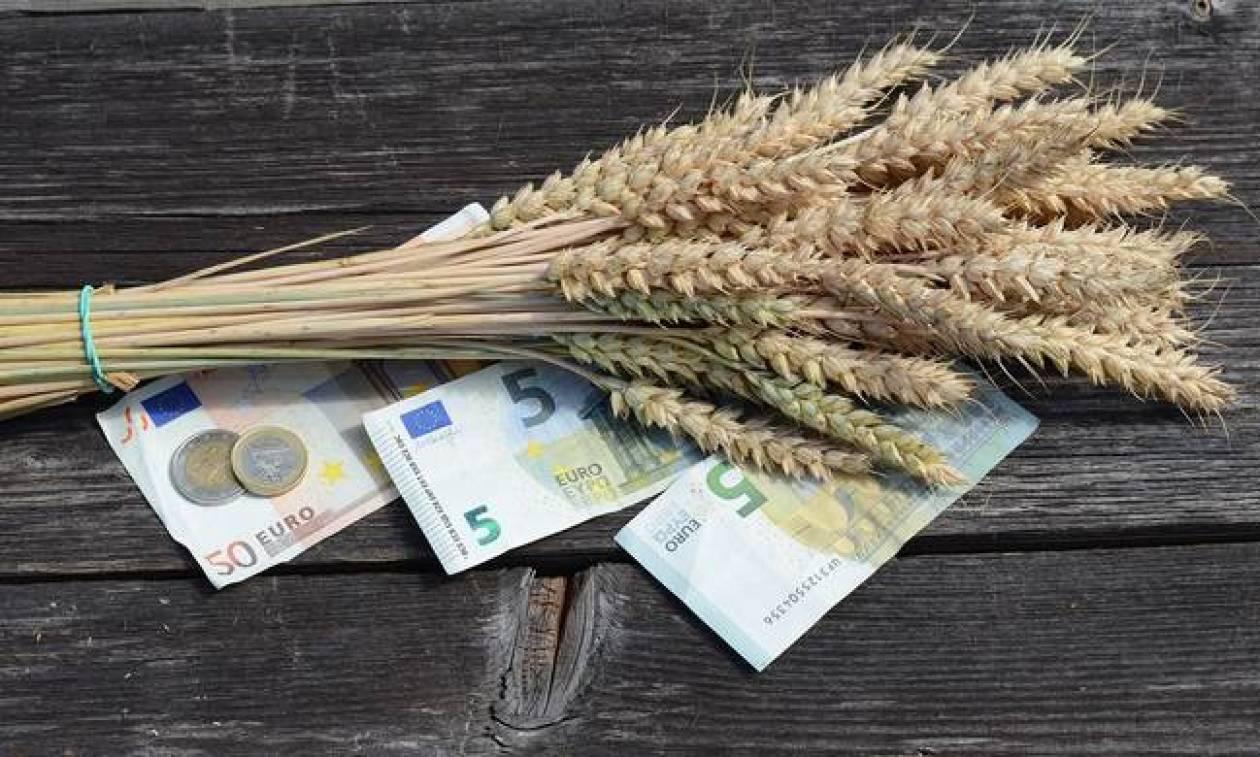 ΕΛΓΑ: Τα 144 εκατ. ευρώ έφτασαν οι αποζημιώσεις, οι ενισχύσεις και οι επιχορηγήσεις το 2017