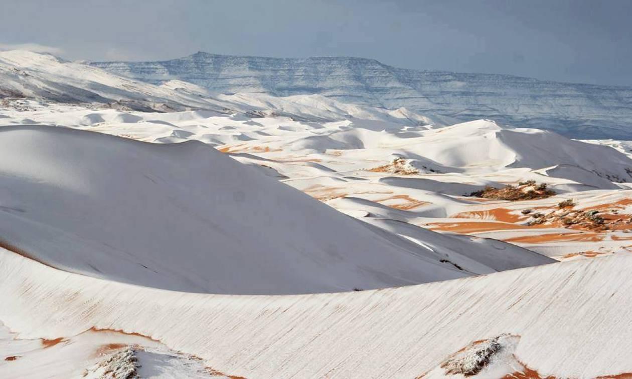 Απίστευτο! Το «έστρωσε» στη Σαχάρα, την πιο καυτή έρημο του κόσμου – Δείτε εντυπωσιακές φωτογραφίες
