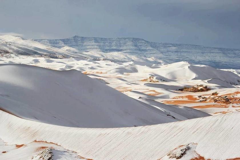 Απίστευτο! Το «έστρωσε» στη Σαχάρα, την πιο καυτή έρημο του κόσμου– Δείτε εντυπωσιακές φωτογραφίες
