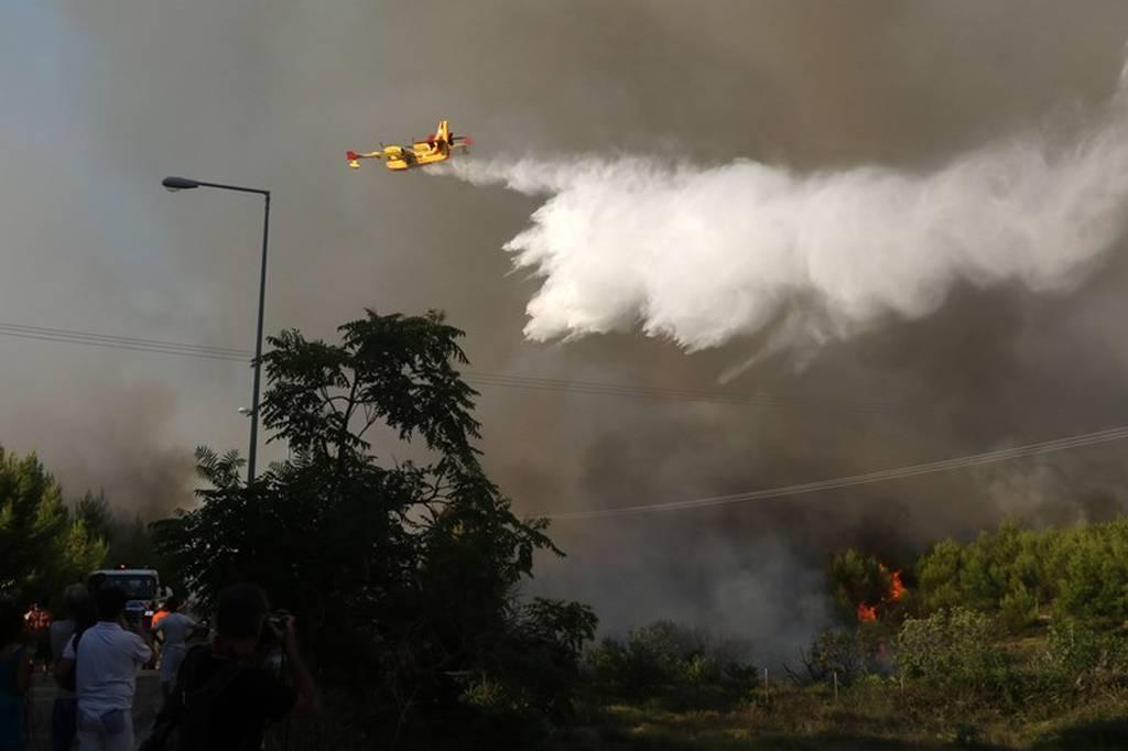 «Η ΔΕΗ έκαψε τον Κάλαμο»: Πόρισμα - «βόμβα» της Πυροσβεστικής (pics)