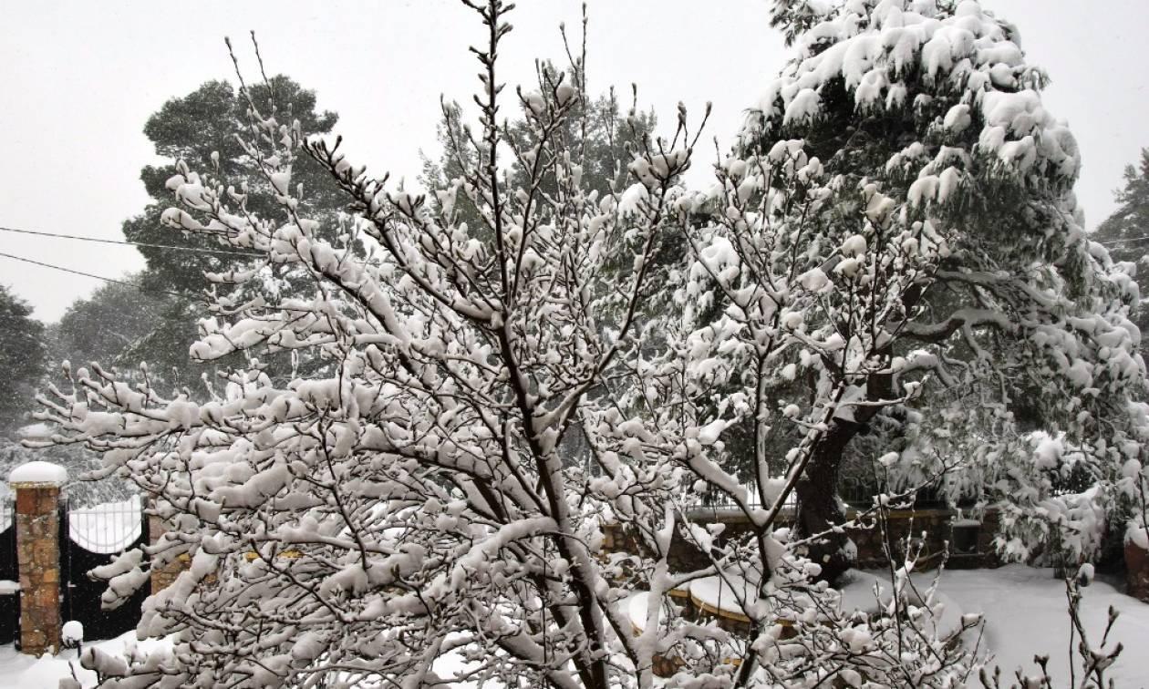 Καιρός: Ο «Θησέας» σαρώνει τη χώρα με καταιγίδες και χιόνια