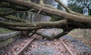 Η καταιγίδα «Φρειδερίκη» σαρώνει τη Βόρεια Ευρώπη – Στους εννέα οι νεκροί (Pics+Vids)