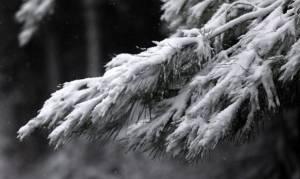 Καιρός: Ψυχρή εισβολή με καταιγίδες και χιόνια τις επόμενες ώρες