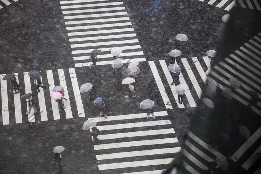 Ιαπωνία: Δεκάδες τραυματίες και ακυρώσεις πτήσεων λόγω κακοκαιρίας (pics)
