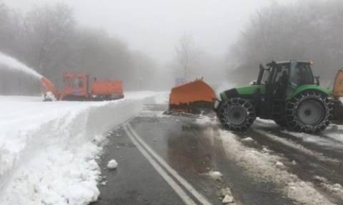 Καιρός: Σφοδρή χιονόπτωση στο Πήλιο – Κλειστά τα σχολεία και το χιονοδρομικό (pics)