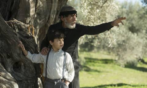 Η Creta Farms Δοξάζει το Ελαιόλαδο με έναν Ύμνο στις Ρίζες Όλων Μας