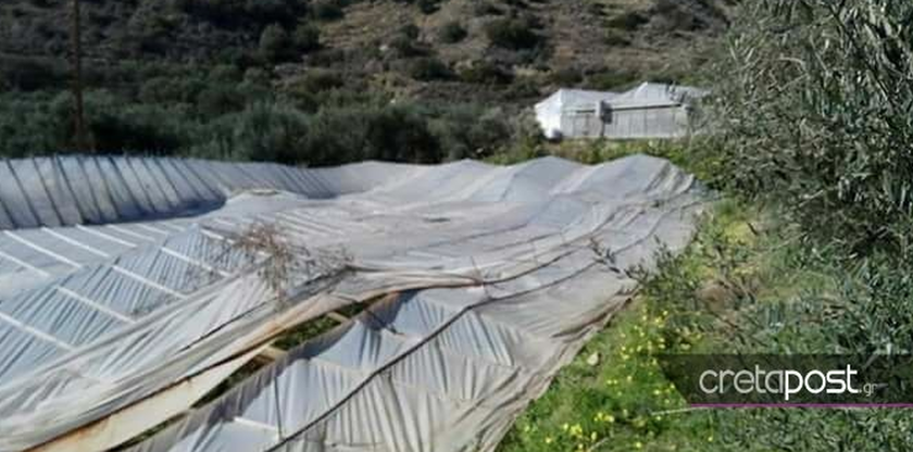 Ιεράπετρα: Τεράστια καταστροφή στις καλλιέργειες από την κακοκαιρία (pics)