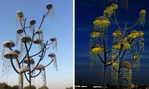 Ινδία: Ένα δέντρο που «πραγματοποιεί» τις επιθυμίες σου
