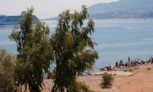 Θρίλερ στη Μυτιλήνη: Βρήκαν ημίγυμνο πτώμα στο λιμάνι